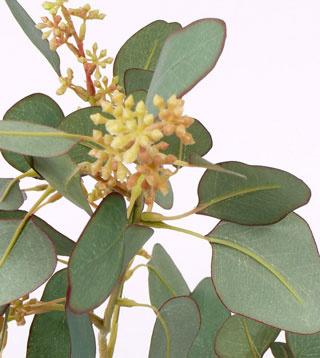 Eucalyptus spray, 78 lvs., 55 buds, 65cm - UV safe