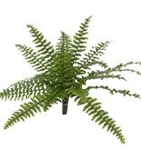 Boston-Farn (Nephrolepsis) 21 Farnblätter, mit 2 Grüntönen, Ø 50cm, UV sicher
