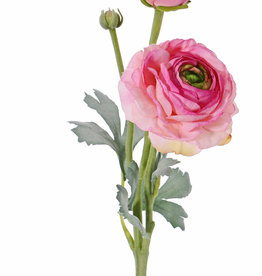 Ranunculus,  2 flores, (Ø 9cm/ Ø 4cm), 1 capullo,  4 hojas, flocado, 40cm