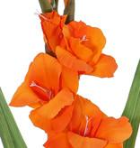 Gladiolus Spray with 5 flowers, 8 buds & 2 lvs, 83cm