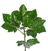 Okra bladtak (Abelmoschus) 6 blad & 1 knop, gecoat, UV bestendig, 73cm