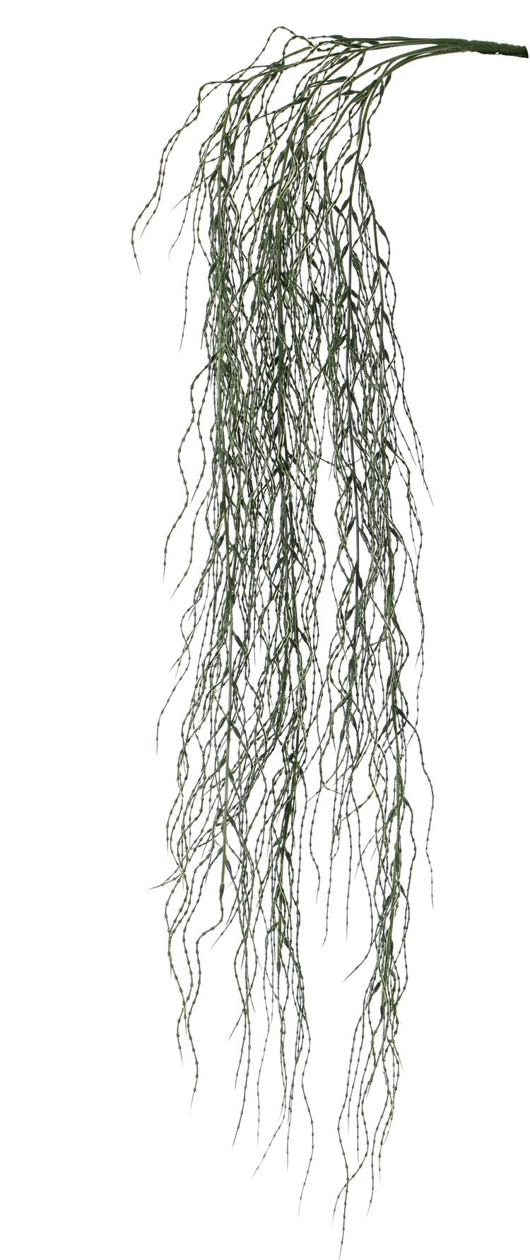 colgante de Sauce llorón (Salix) x9, plástico, 95cm