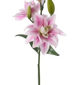 Lelie casablanca 'dubbel', 3 bloemen, 2 knop & 4 blad, 81cm