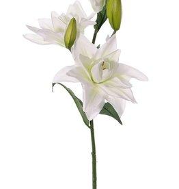 Lilie Casablanca, 3 Blumen, 2 Knospen, 4 Blätter, 81cm