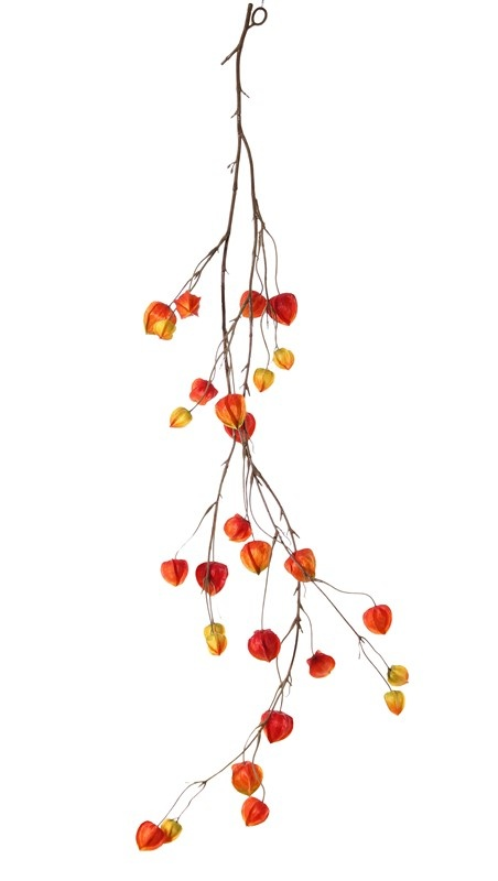 Physalisgarland, 'AutumnBreeze', 28 calyces (10Lg/9Md/9Sm), 120cm