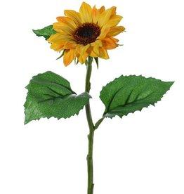 Zonnebloem (Helianthus) klein, Ø 8cm & 3 blad, 35cm