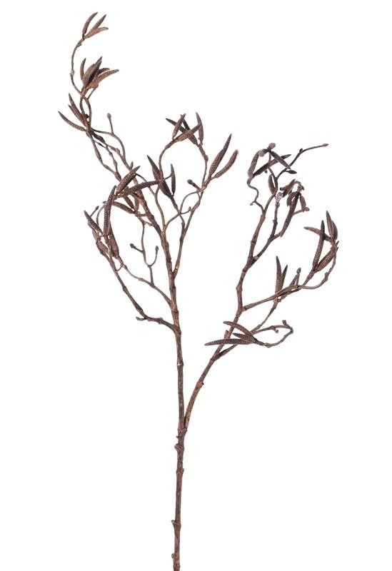 """Birkenzweig mit 60 Birkenkätzchen, (Betula)""""Dried Nature"""", 90cm"""