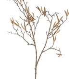"Birch spray with 60 fruits (Betula)""Dried Nature"", 90cm"