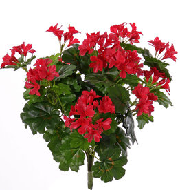 Geranio Austriaca (Pelargonium), 108 flores, 92 hojas, 40cm, UV resistente