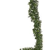 Buchsgirlande 180cm, UVsafe, 180cm