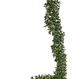 Boxwood garland, 486 clusters, UVsafe, 180cm