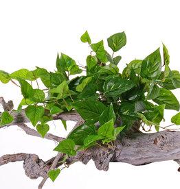 Pothosbush (Epipremnum) 10 vertakkingen, 100 bladeren, PE blad, UV bestendig