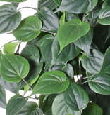 "Philodendron giant hanger, 19 branches, 294 leaves in total ""Vital Greens"", 91 cm, fire retardant"
