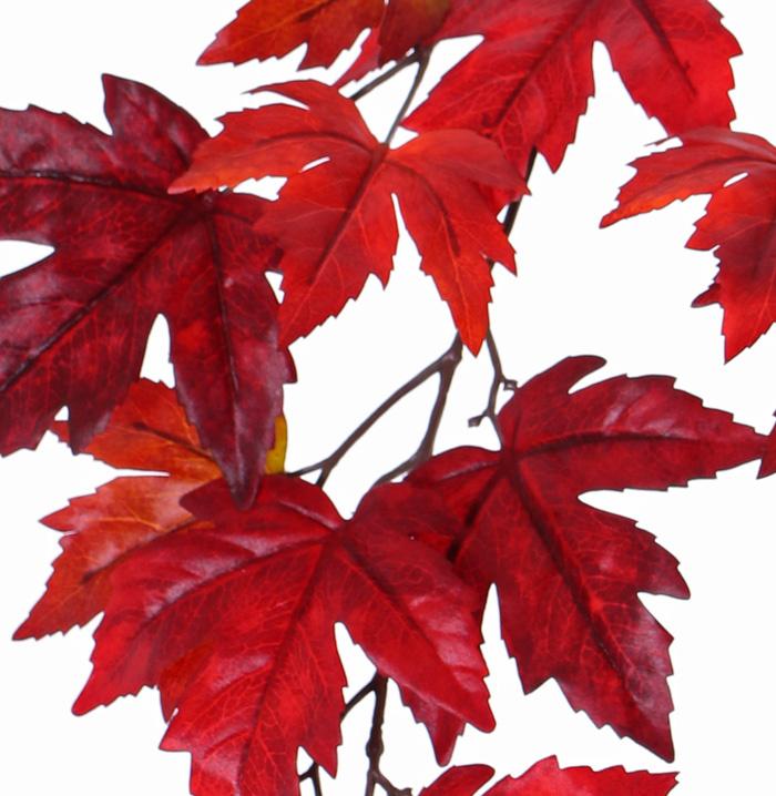 "Esdoorn bladtak ""Ruby"", 15 bladeren (Ø 10/14cm), 91cm"