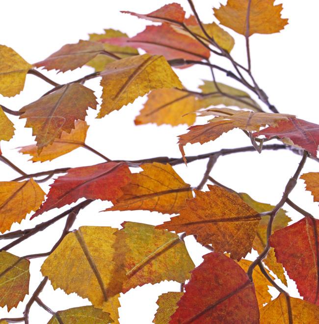 Birkenzweig, 3 Verzweigungen, 50 Blätter,  65cm