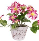 Petunia, 16 flores, (4 Lg/8 Me/4 Sm), & 12 hojas,  Ø 30cm