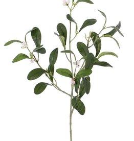 Mistlelzweig mit 4 Verzweigungen, 12 Beeren, 36 Blätter, 55cm