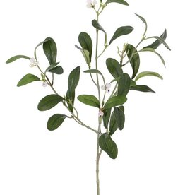 Mistletoe , 12 berries,  36 leaves, 55 cm