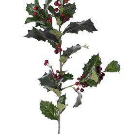 Ilex aquifolium, 31 hojas, 36 bayas, 76cm