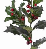 Ilexzweig, Stechpalme, (Ilex aquifolium) mit 3 Verzweigungen, 31 Blätter, 36 Beeren, 76cm