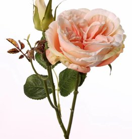 "Rama Rosa  ""little joy"" 1 flor, 1 capullo, 38cm, Ø 8cm"