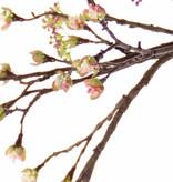 Rama de arce (Acer) branch, 27 frutas, 8 flores, 111cm