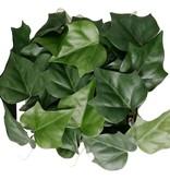 Hedera gala haag element, 2tone groen, UV bestendig, 25 * 25cm, (polyester)