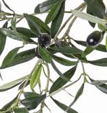 Olive spray, 104lvs, 6fruit, 55cm