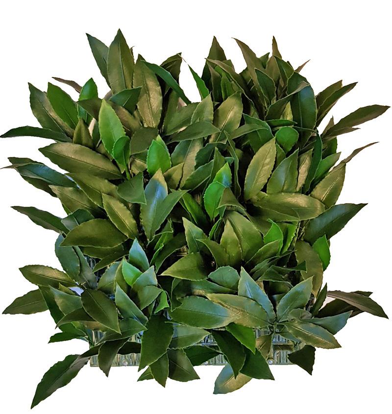 Lorbeerblatt-Heckenelement (Laurus), 25 x 25cm, 193 Blätter, 2 Grüntöne, UV sicher, Sonderpreis