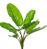 Bananenplant (Musa) 8 blad, 2sm/2me/4lg, (PE soft plastic), UVsafe, 55cm