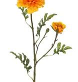 Aufrechte Studentenblume (Tagetes erecta), 2 Blumen (Ø 9cm/5cm), 1 Knospe & 25 Blätter (4sets), 63cm