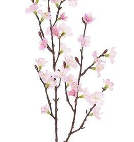 Sakura bloesemtak (Prunus jamasakura), 2 vertakkingen, 36 bloemen, 8 plastic knoppen, 76cm