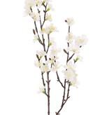 Sakura-Blütenzweig (Prunus jamasakura), 2 Verzweigungen, 36 Blüten, 8 Knospen, 76cm