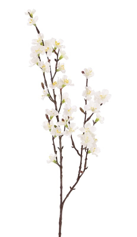 Sakura bloesemtak (Prunus jamasakura), 2 vertakkingen, 36 bloemen, 8 plastic knoppen, 76cm -