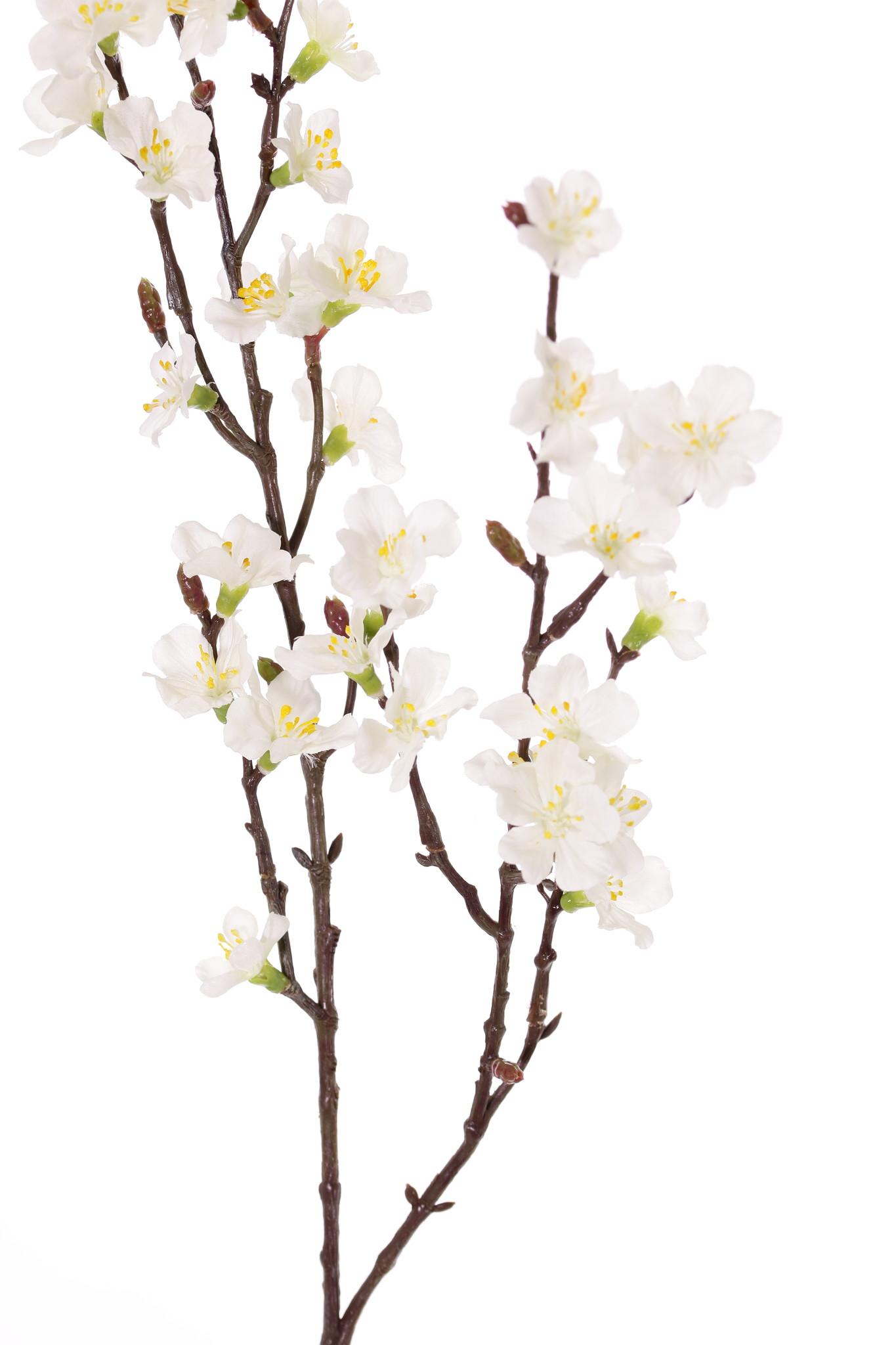 Sakura blossom branch (Prunus jamasakura), 36 flowers, 8 buds, 76cm