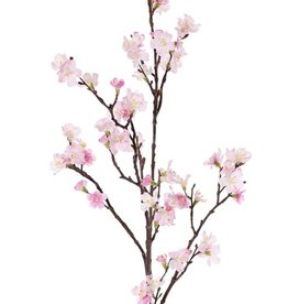 Sakura-Blütenzweig (Prunus jamasakura) 3 Verzweigungen, 72 Blüten, 9 Knospen, 96cm