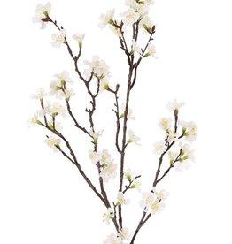 Sakura blossom branch (Prunus jamasakura), 72 flowers, 9 buds, 96cm