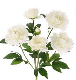 Peony bouquet, 5 flowers, 1 bud &  lvs., 45cm, Ø 30cm