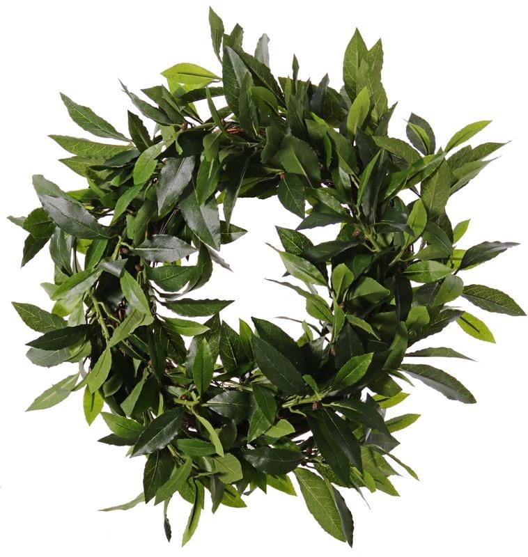 Laurierkrans (Laurus nobilis) 'Top Green', Ø 40cm, UV bestendig, rattan basis