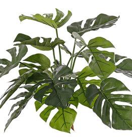 Monsteraplant (Gatenplant), 15 bladeren, FR & UVsafe, 40cm