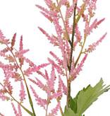 Astilbe (falsa barba de la cabra,  Spirea falso), 2 flores (35cm/25cm) & 9 hojas (3 sets), 90cm