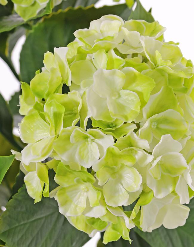 Hortensia (Hydrangea), 'All weather', 3 bloemtrossen (141 bloemen) & 27 blad, 43cm, UV bestendig
