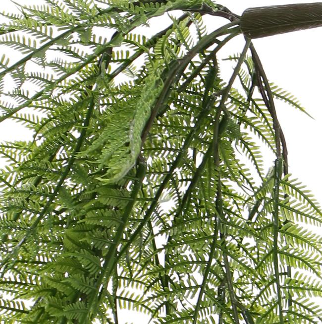 Woodwardia fern (chain fern), 55 fronds, 70cm - UV safe