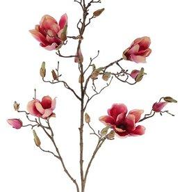 Magnolien-Zweig, 4 Blumen, 22 Knospen, 107cm