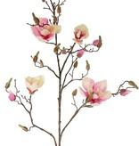 Rama de magnolia con 4 flores, 22 capullos, 107cm