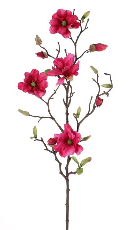 Magnolia fijn steek, 75cm,4 bloemen (Ø 7- 8 cm)