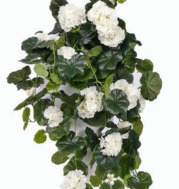 Hängegeranie (franz.), Pelargonium peltatum mit 10 Verzweigungen, 232 Blüten, 128 Blätter