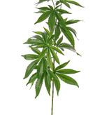 Cannabis sativa (Hennep), kunstplant, 14 bladeren (9*15cm/5*12cm), 97cm