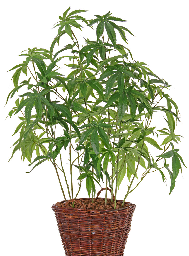 Artificial cannabis sativa, 14 leaves (9*15cm/5*12cm), 97cm