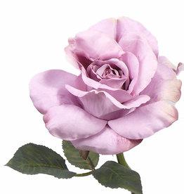 "Rosa Colin ""Vintage"" x 1hoja, 31cm"
